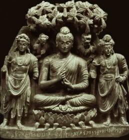 Ин витро в Древна Индия? Възможно е!