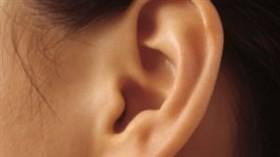 Болка в ухото