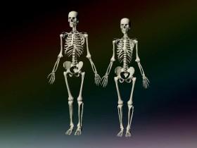 костите