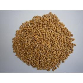 зърнени каши