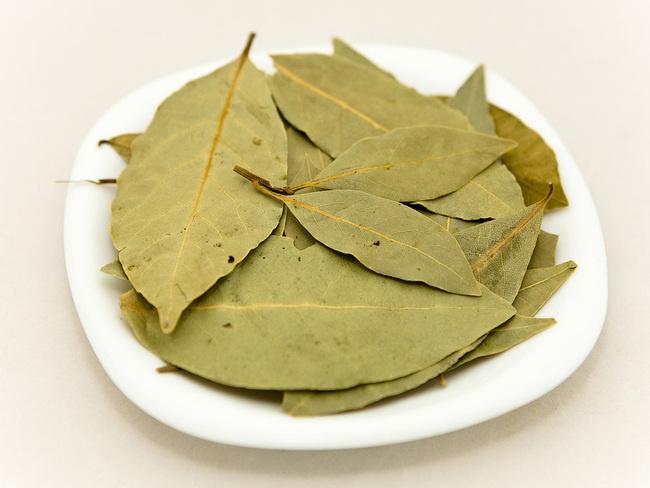 Лечебните свойства на дафинов лист | Алтернативна медицина