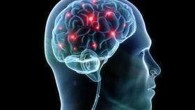 Synapse_in_brain