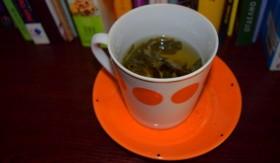 djodjen-tea