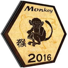 monkey_20161