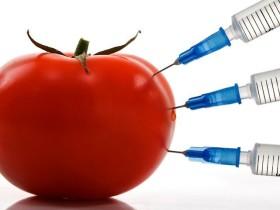 ГМО храните