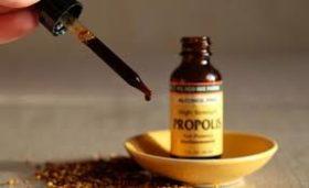 Най-доброто средство за настинка е клеева тинктура