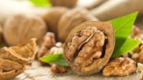 А какви са полезните свойства на ореха?