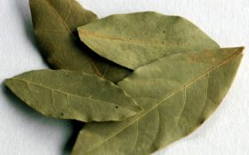 Дафинов лист и канела: магическо средство за отслабване