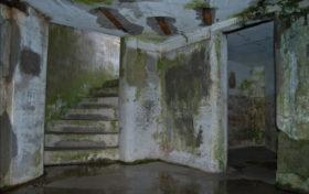 Как се махат мухъл и петна от плесен от стените в дома