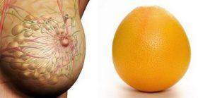 Храни, които приличат на човешки органи