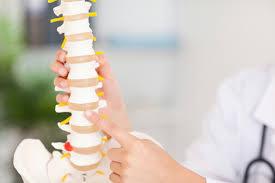 Как прешлените на нашия гръбначен стълб определят здравето ни?