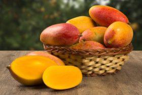 Mango-500x334 - Copy