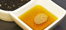 niger-seed-oil