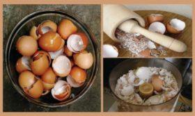 cherupki ot jajce_09