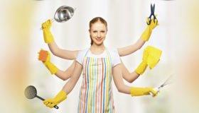 467392-housewife