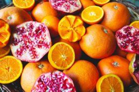 plodove_98