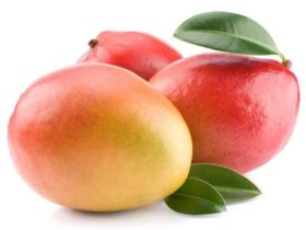 Mango3-768x576