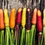 Моркови – защо са мощни лечители за ред болести?