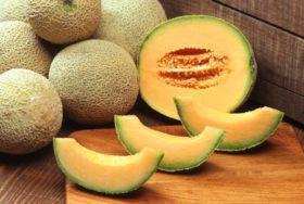 13musk-melon