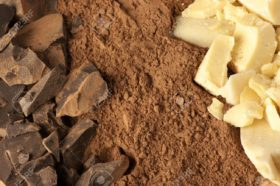 Chocolate-ingredients-cocoa-solids-cocoa-oil-and-cocoa-powder-close-up--Stock-Photo