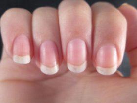 pojylteli-nokti