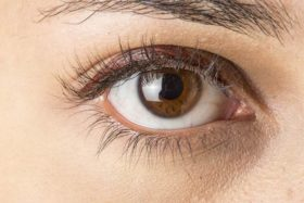 eye-color-brown-b-330x220@2x