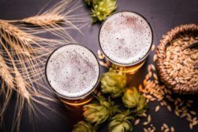 pivo – Копие