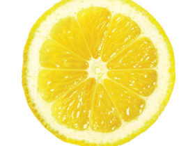 1003p48-lemon-slice-x