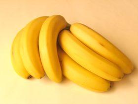 banani_55