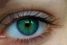 билки за зрение