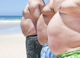 fat-antihealth